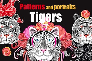 Patterns and portraits of tigers