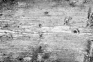 Black and white painted wood texture