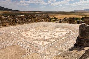 Roman ruins at Volubilis in Morocco