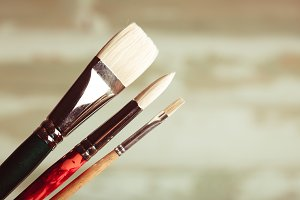 Paint brushes kit