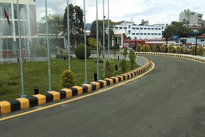 Road with garden