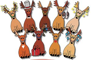 Reindeer Hand Drawn Illustrations