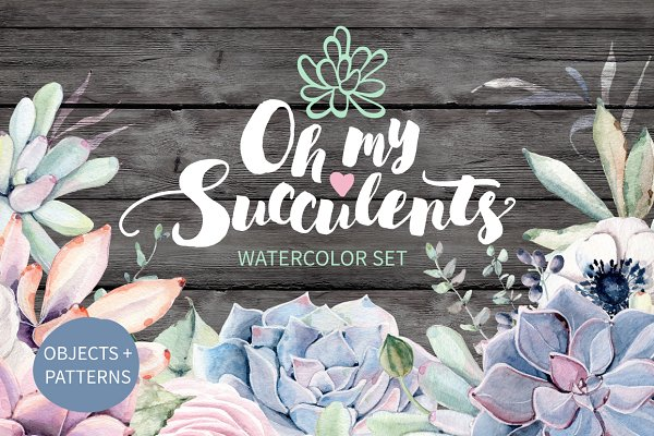 Oh my Succulents watercolor set