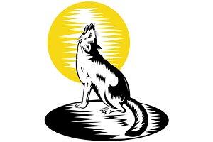 Fox Wild Dog Howling