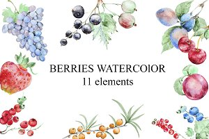 Set of watercolor berries