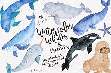 Whales Sea Nautical Watercolor set