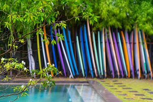 different color surf boards