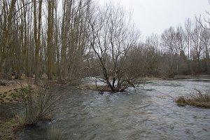 Tera River in Garray