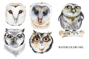 Set of watercolor owls