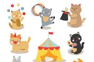 Circus cats vector