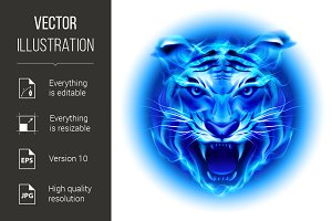 Head of blue fire tiger.