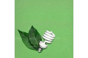 Eco bulb.