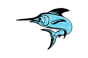 Blue Marlin Fish Jumping Drawing