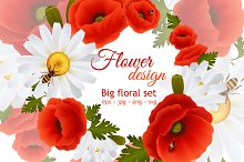 Poppy and daisy flower set
