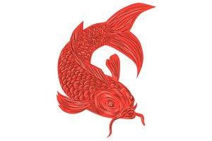Red Koi Nishikigoi Carp Fish Drawing