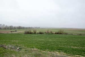Landscape Almenar de Soria