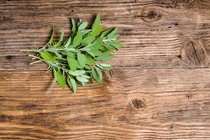 Fresh sage herb on wooden table
