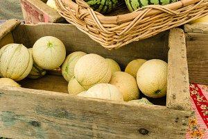Box of Cantalope melons