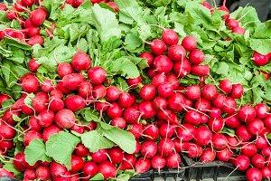Display of fresh red radishes