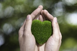 Human Hand Holding Green Grass Heart on blurred green nature background- ecology and environment concept