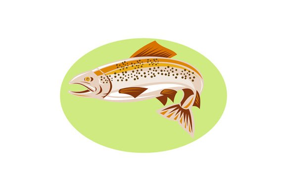 Trout Fish Jumping