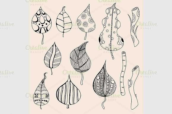 Hand drawn artwork Forest leaves in Graphics