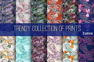 Trendy collection of prints.