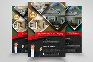 Real Estate & Property Flyer