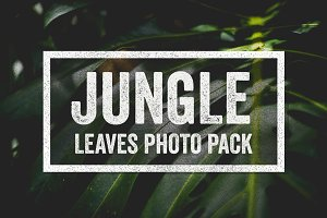 Jungle Leaves Photo Collection