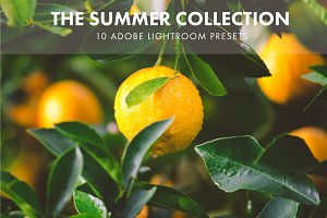 Adobe Lightroom Presets Summer