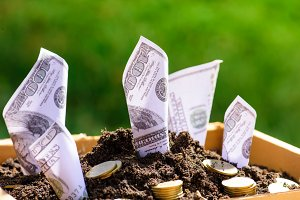 Business finance money concept