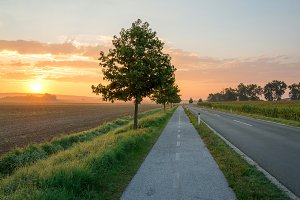 Countryside road in the sunrise