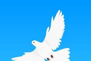 Pigeon Flat Design