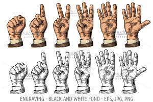Set gestures hands counting numbers