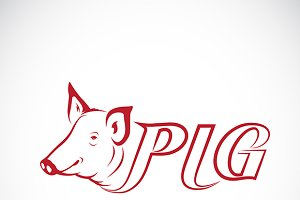 Vector design a pig head is text.