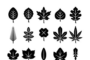 Set icons of leaf