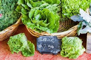 Display of fresh lettuce