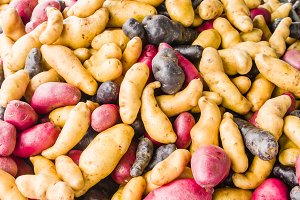 fingerling potatoes at the market