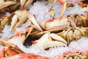 fresh Dungeness crab