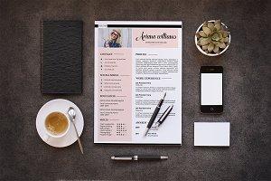 Professional Resume | CV V028
