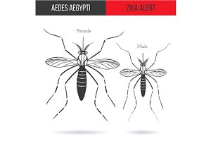 Zika virus graphic design elements.