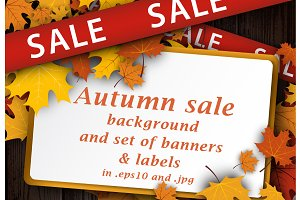 Autumn sale set with maple leaves