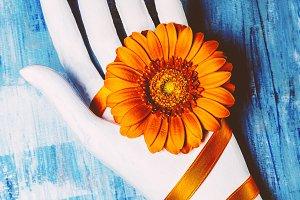 Art Design. Flower and plaster hand