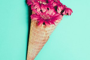 cone with flowers Minimal Art