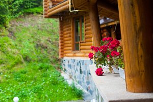 village house with summer nature