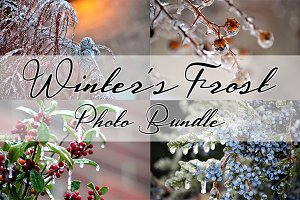 WINTERS FROST PHOTO BUNDLE