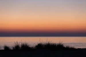 Beach grasses at sunset S