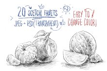 20 sketch fruits (big bundle)