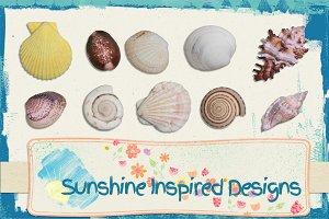 Sea Shells No.1