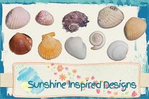 Sea Shells No.2